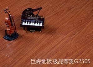 強化極品尊貴系列g2505