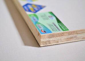 龙8pt老虎机E0级杉木生态板-细布纹